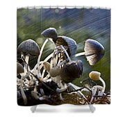 Nature Shower Curtain by Avalon Fine Art Photography