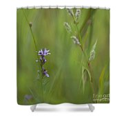 Natures Poetry... Shower Curtain by Nina Stavlund