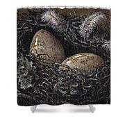Nesting Shower Curtain by Adam Zebediah Joseph