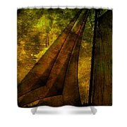 Night Sailing Shower Curtain by Susanne Van Hulst