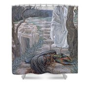 Noli Me Tangere Shower Curtain by Tissot