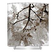 Oak Leaves Shower Curtain by Frank Tschakert