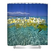 Ocean Surface Shower Curtain by Vince Cavataio - Printscapes