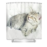 On Cloud Nine Shower Curtain by Amy Tyler