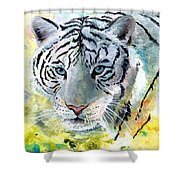 On The Prowl Shower Curtain by Sherry Shipley