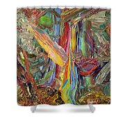 Paint Number 40 Shower Curtain by James W Johnson