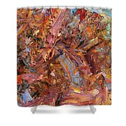 Paint number 43b Shower Curtain by James W Johnson