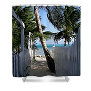 Palm Alley Shower Curtain by Karen Wiles