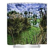 Palm Desert Sky Shower Curtain by Blake Richards