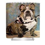Pastel English Brindle Bull Dog Shower Curtain by Patricia L Davidson