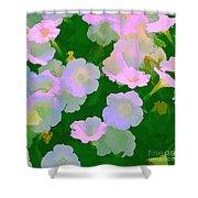 Pastel Flowers Shower Curtain by Tom Prendergast