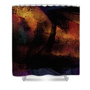 Pathways To Prosperity The Power Of Belief Shower Curtain by James Barnes