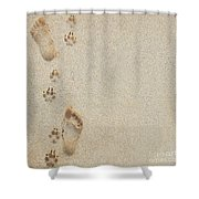 Paw And Footprints 2 Shower Curtain by Brandon Tabiolo - Printscapes