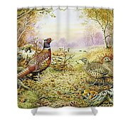 Pheasants In Woodland Shower Curtain by Carl Donner
