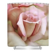 Pink And Ivory Rose Portrait Shower Curtain by Jennie Marie Schell