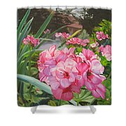 Pink Geraniums Shower Curtain by Lea Novak