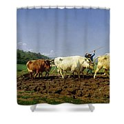 Ploughing In Nivernais Shower Curtain by Rosa Bonheur