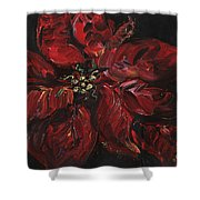 Poinsettia Shower Curtain by Nadine Rippelmeyer