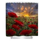Poppy Field Shower Curtain by Debra and Dave Vanderlaan