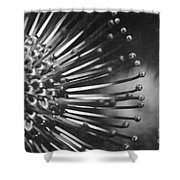 Possibility Is The Secret Heart Of Time Shower Curtain by Sharon Mau
