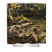 Private Retreat Shower Curtain by Tamyra Ayles