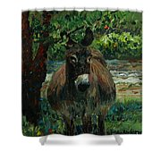 Provence Donkey Shower Curtain by Nadine Rippelmeyer