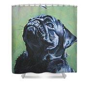 Pug Black  Shower Curtain by Lee Ann Shepard