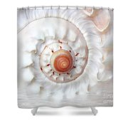 Purify Shower Curtain by Jacky Gerritsen