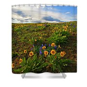 Purple and  Gold Shower Curtain by Mike  Dawson