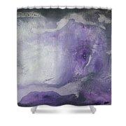 Purple Explosion By Madart Shower Curtain by Megan Duncanson