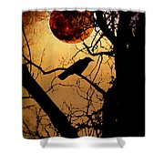 Raven Moon Shower Curtain by Bill Cannon