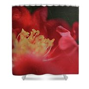 Reaching For Joy Shower Curtain by Laurie Search