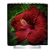 Reaching Out Shower Curtain by Arnie Goldstein