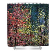 Red And Yellow Leaves Abstract Horizontal Number 1 Shower Curtain by Heather Kirk