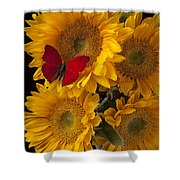 Red Butterfly With Four Sunflowers Shower Curtain by Garry Gay