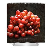 Red Grapes Shower Curtain by Andee Design