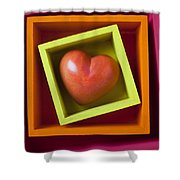 Red Heart In Box Shower Curtain by Garry Gay