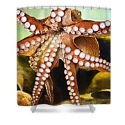Red Octopus Shower Curtain by Marilyn Hunt