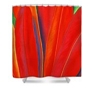 Red Petals Shower Curtain by Lucy Arnold