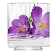 Reflections of Beauty Shower Curtain by Cheryl Young