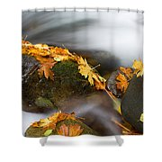 Respite Shower Curtain by Mike  Dawson
