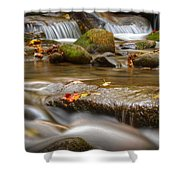 Roaring Fork Stream Great Smoky Mountains Shower Curtain by Steve Gadomski