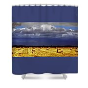 Rolling On Shower Curtain by Holly Kempe