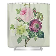 Rose Shower Curtain by Pierre Joseph Redoute