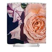 Rose Splendour Shower Curtain by Kerryn Madsen-Pietsch