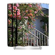 Roses in Winter Shower Curtain by Susanne Van Hulst