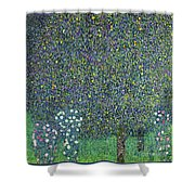 Roses Under The Trees Shower Curtain by Gustav Klimt