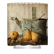 Rustica Shower Curtain by Amy Weiss