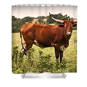 Rusty Shower Curtain by Tamyra Ayles