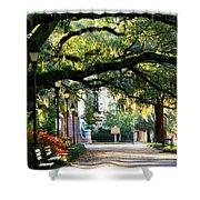 Savannah Park Sidewalk Shower Curtain by Carol Groenen